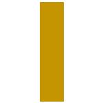 dr-amali-logo-g